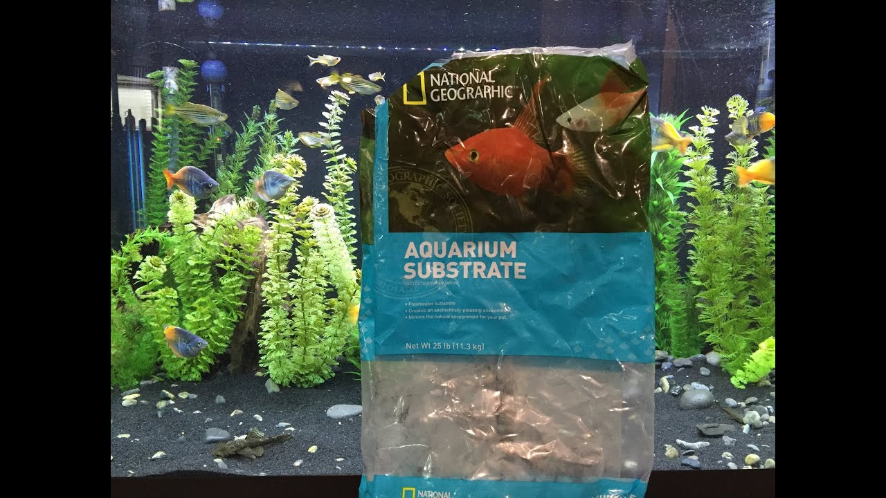 National geographic black sand full review youtube for Black sand fish tank
