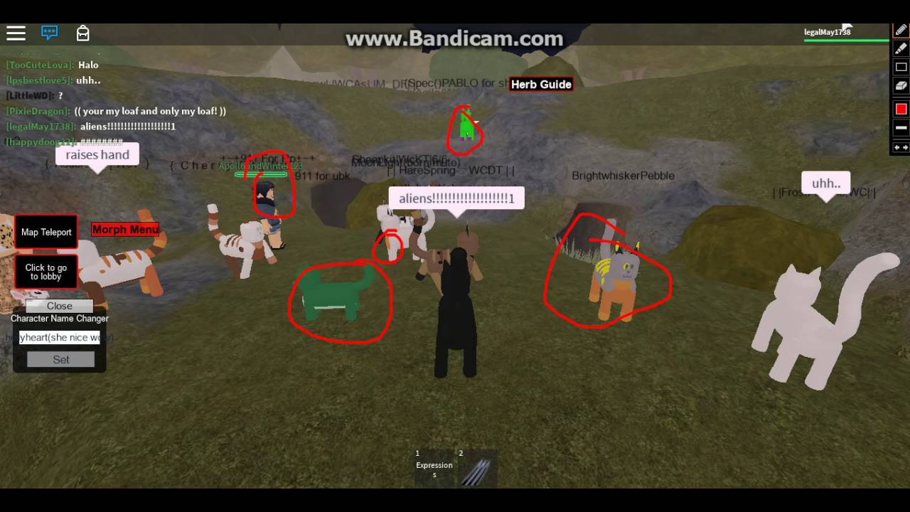 Legacy Warrior Cats Roleplay Mountain Territory Roblox - Roblox Forest Territory Free Robux Tool Created By Noob