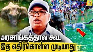 Environmentalist Ramamurthi | Kerala Elephant Death