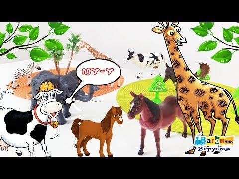 Мультфильм про животных диких и домашних животных