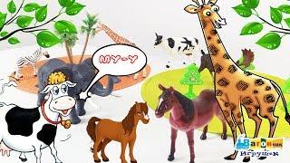 Домашние и дикие животные.