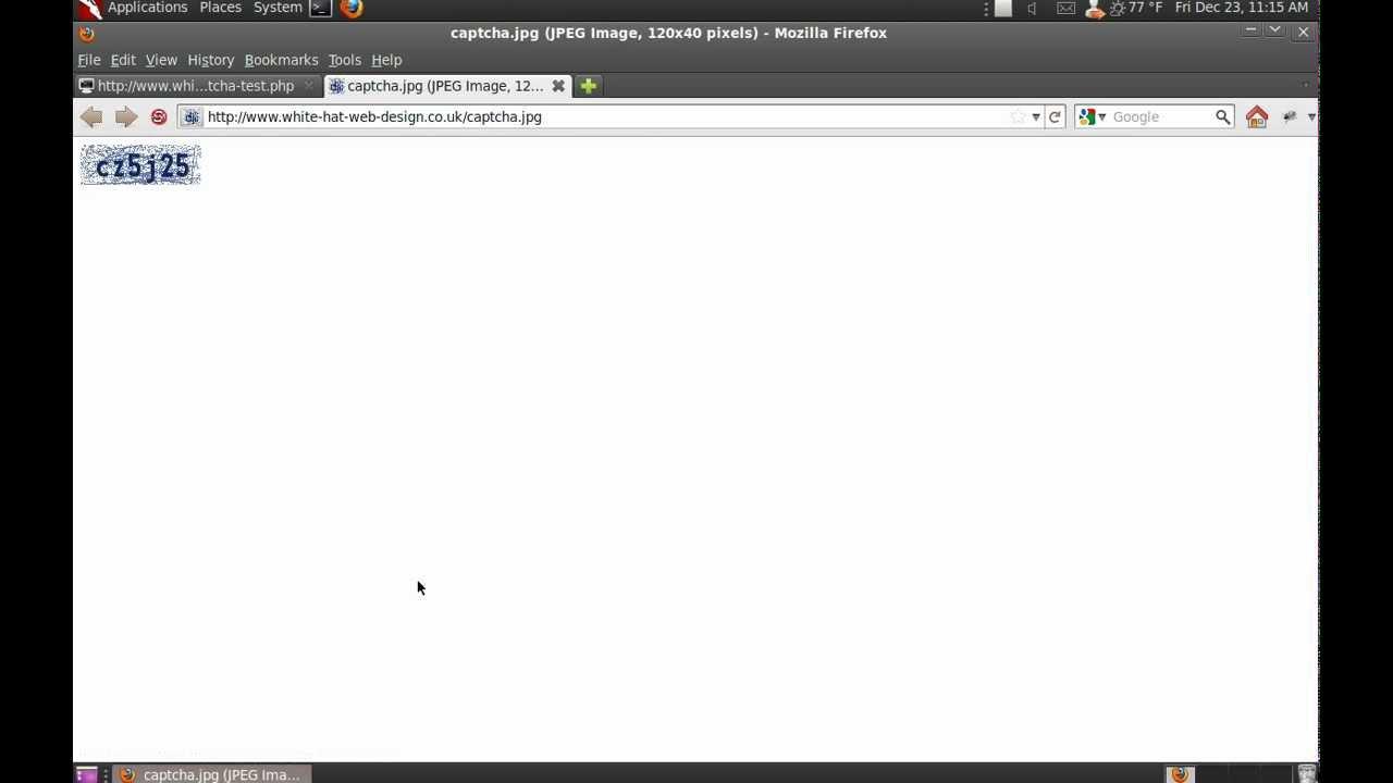 Captcha reload attack demo