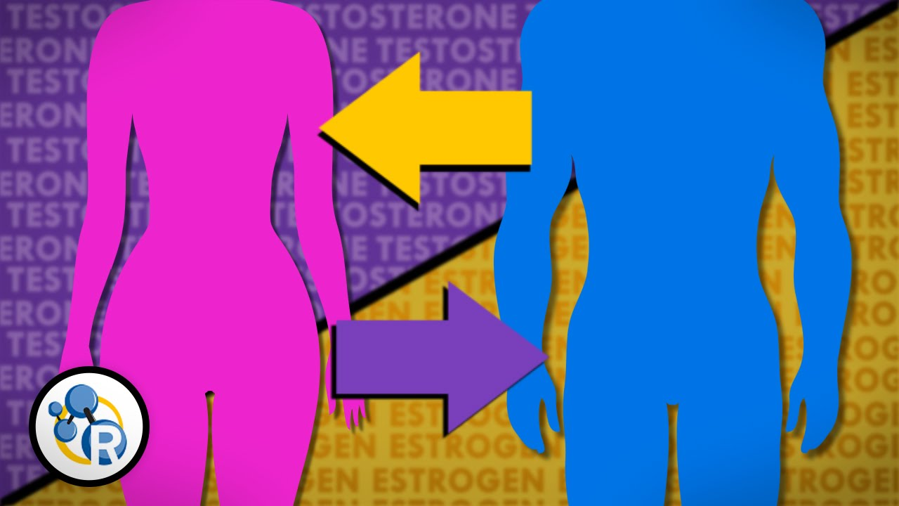 Hormone replacement therapy male to female transsexual surgery