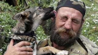 Why Dogs Lick Our Faces And Other Dog Facts