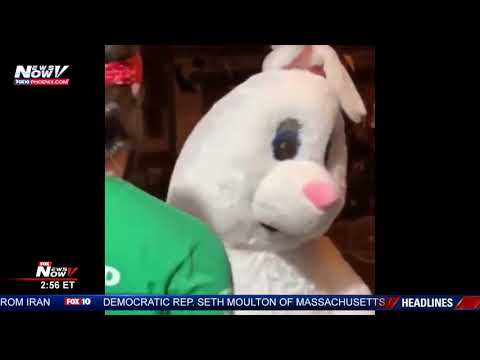 BUNNY FIGHT: Only In Florida Fight! Easter Bunny CAUGHT ON CAM