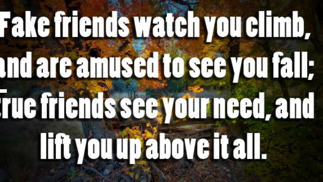 Quotes About Fake Friendship Quote About Fake Friends  Youtube