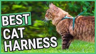 Best Cat Harness | TOP 7 Cat Harnesses (2020)  ✅
