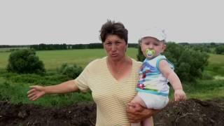 Бездействие властей в Воронежской области. Обращение к Губернатору.
