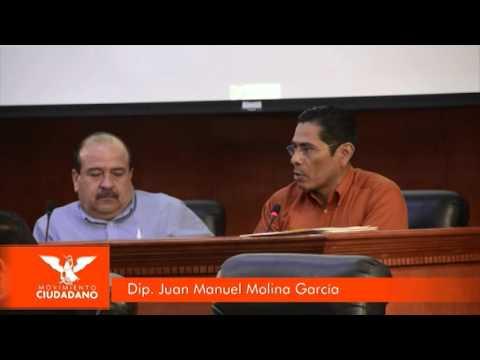 Licencia de Juan Manuel Molina