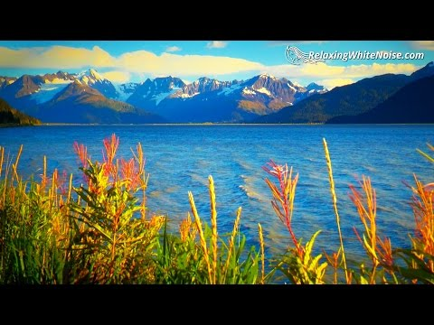 Calming Alaska Ocean Water Sounds for Stress Relief | White Noise to help you Study or Sleep | 10 Hr