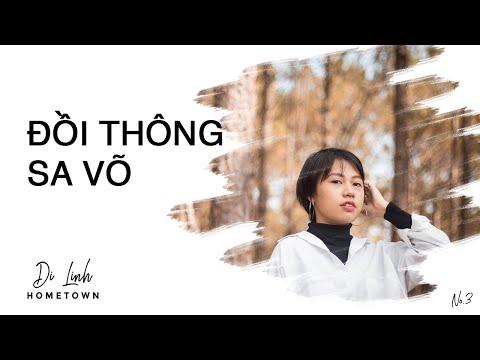 1001 kiểu chụp hình ở rừng thông Sa Võ - Di Linh I A tour to my hometown I