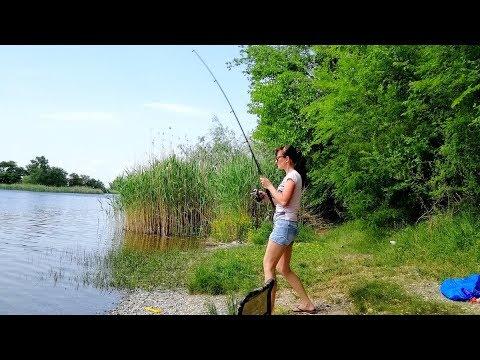Рыбалка. 🐠🐟🐡🐬🦈