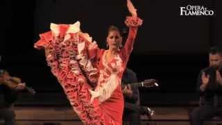 Opera y Flamenco - Olga Llorente
