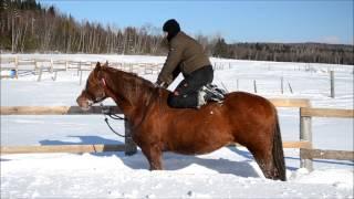 2013 01 05 Plaisirs hivernals