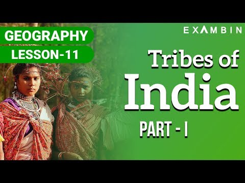 Tribes of India 01 - Important tribes in India