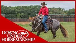 Clinton Anderson: How to Handle a Fresh Horse - Downunder Horsemanship