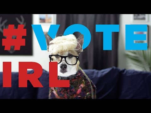 meet-the-#voteirl-dogglegangers