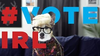 Meet the #voteIRL Dogglegangers