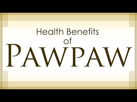 PAW PAW FRUIT HEALTH BENEFITS - AMAZING AND SUPER FRUITS - BENEFITS OF WELLNESS