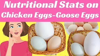 Nutritional Stats on Chicken Eggs And Goose Eggs | Weight Loss Coaching Program