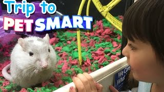 Идём в зоомагазин смотреть зверюшек и рыбок Trip to Pet Smart watching animals(Check out other videos from Miss Vika!! http://vid.io/xqPF В этом видео Вика и папа в Американском zоомагазине