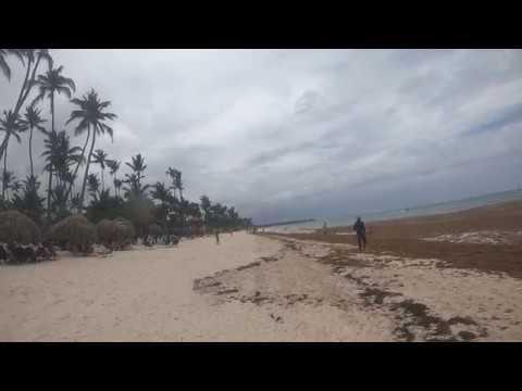 ВОДОРОСЛИ в Доминикане). НЕ СЕЗОН!