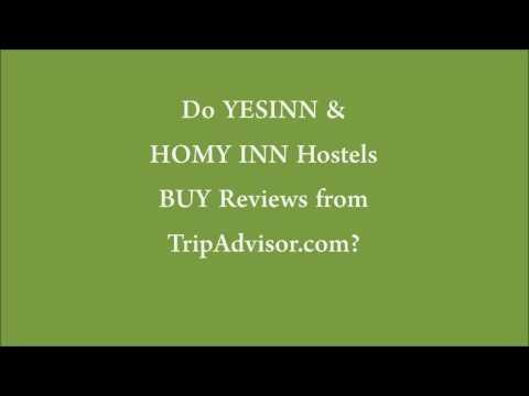 Yesinn buy fake reviews in trip advisor