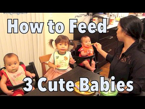 How to Feed 3 Cute Babies! - September 22, 2014 - itsJudysLife Daily Vlog