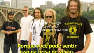 SOJA Summer Breeze Legendado
