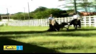 El Araucano - Juan Farfan /  [ Discos Fuentes ] (Video Oficial)