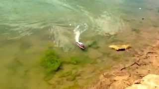 RC Boat Fishing