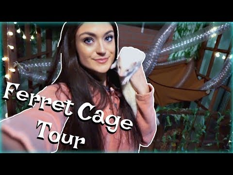 cage-tour-|-custom-ferret-cage