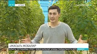 Астанада жаңа жылыжай ашылды