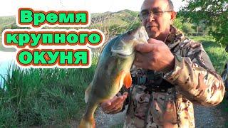 Время крупного окуня Окунь на спинниг Воблеры для рыбалки на большого окуня