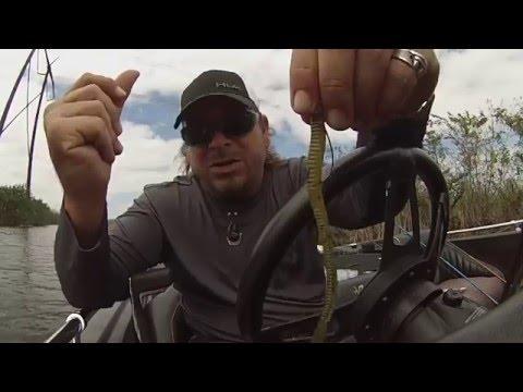 Worm fishing for Bass strategies - top 3