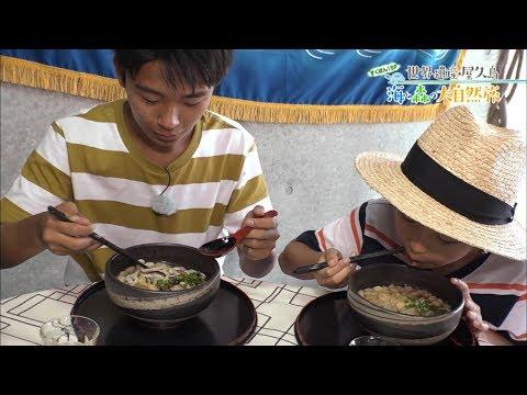 (1)すくすくぽん!SP 世界遺産・屋久島 海と森の大自然旅 出演:加藤清史郎・智恵里・憲史郎