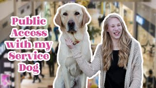 Taking My Service Dog to the Mall | Public Access