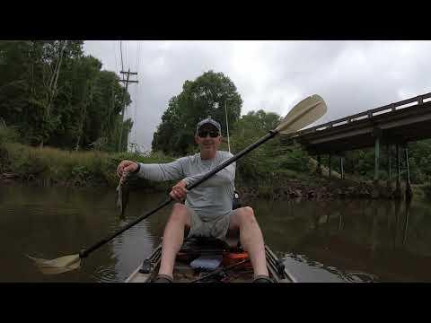 Kayak Fishing Another Small Creek