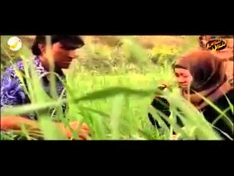 lagu india versi arab by atox sadewo
