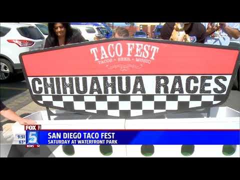 R Dub! - Live on San Diego Fox 5 for Taco Fest 2018