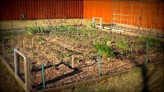 Spring is here & the Vegetable Garden is almost Full