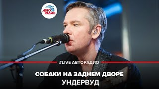 🅰️ Ундервуд - Собаки На Заднем Дворе (#LIVE Авторадио)