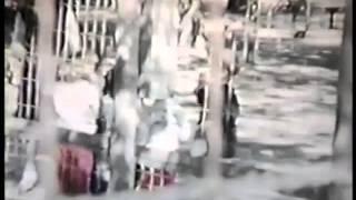 Massapequa Zoo 1957?