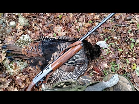 Public land - Vermont Turkey Hunt-2021-