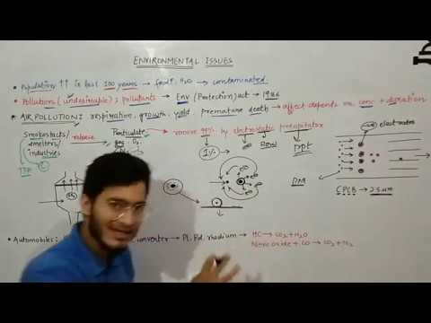 Environmental Issues: Electrostatic Precipitator, Scrubber And Catalytic Converters