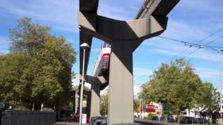 Trolleybus & Monorail Train-Seattle Public Transit in Action