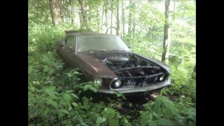 Abandoned Cars Part 1: The Ford Mustang
