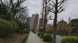永田町シリーズ第三弾(国立国会図書館~憲政記念館)