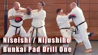 Practical Kata Bunkai: Niseishi / Nijushiho Pad-Drill 1