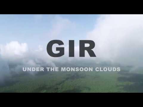 #GIPL Gir National